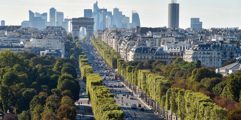 Avenue des Champs Elysées